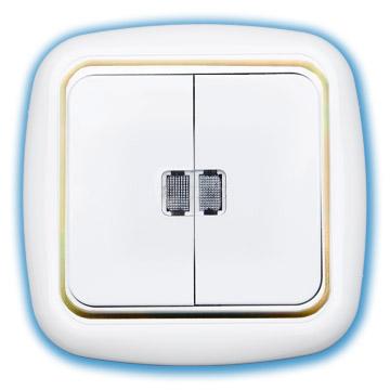 Выключатель 2-кл с индик. с/у С510-207 бел-зол